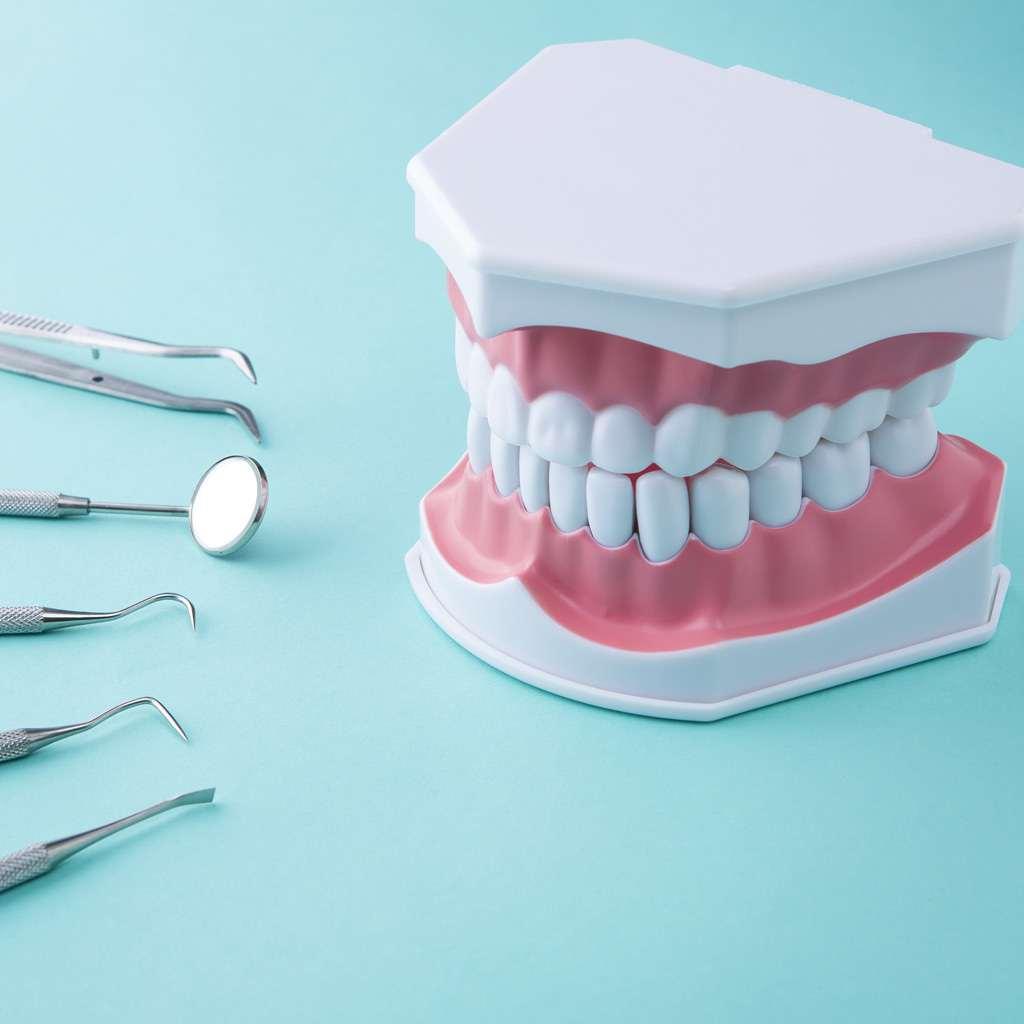 歯周病の予防・治療に
